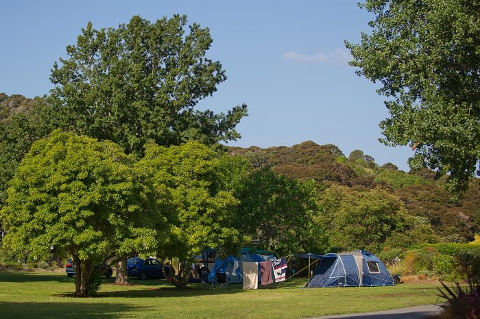 Tent campsites at Flaxmill, Cooks Beach