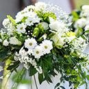 Wedding Flower Professionals